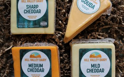 The Originals: Cheddars and Gouda